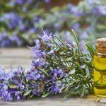 Teh Daun Rosemary yang Kaya Manfaat